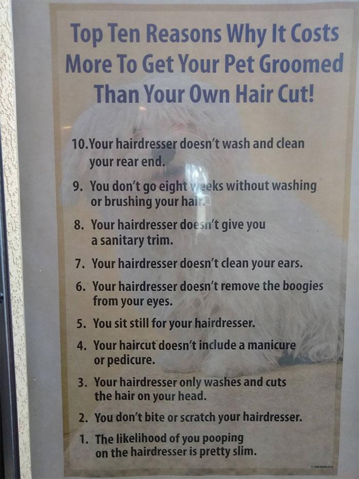 Cette toiletteuse était tannée de se faire demander pourquoi ses services coûtent plus cher qu'une coiffeuse, alors elle a créé une affiche hilarante pour ses clients