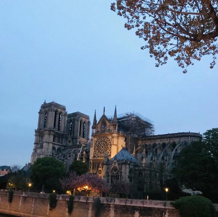 10 faits pour vous donner espoir en l'avenir de la cathédrale Notre-Dame