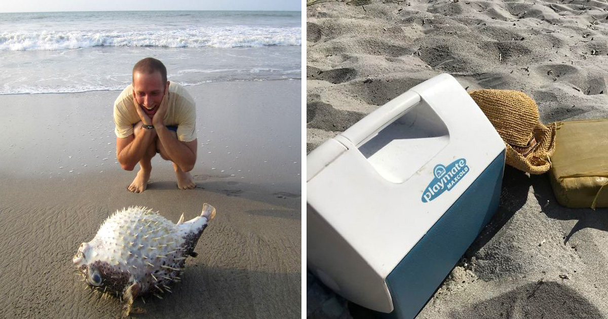 33 choses les plus intéressantes que des gens ont trouvées sur la plage