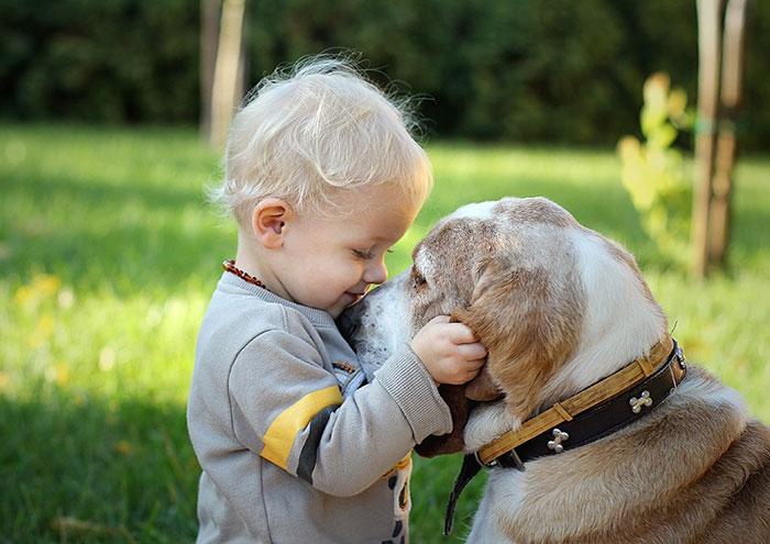 22 adorables photos qui prouvent que vos enfants ont besoin d'un chien