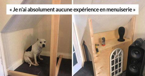 Ce chien a un problème de confiance, alors son propriétaire lui a construit un «boudoir» qui comprend même une «télé» pour le réconforter