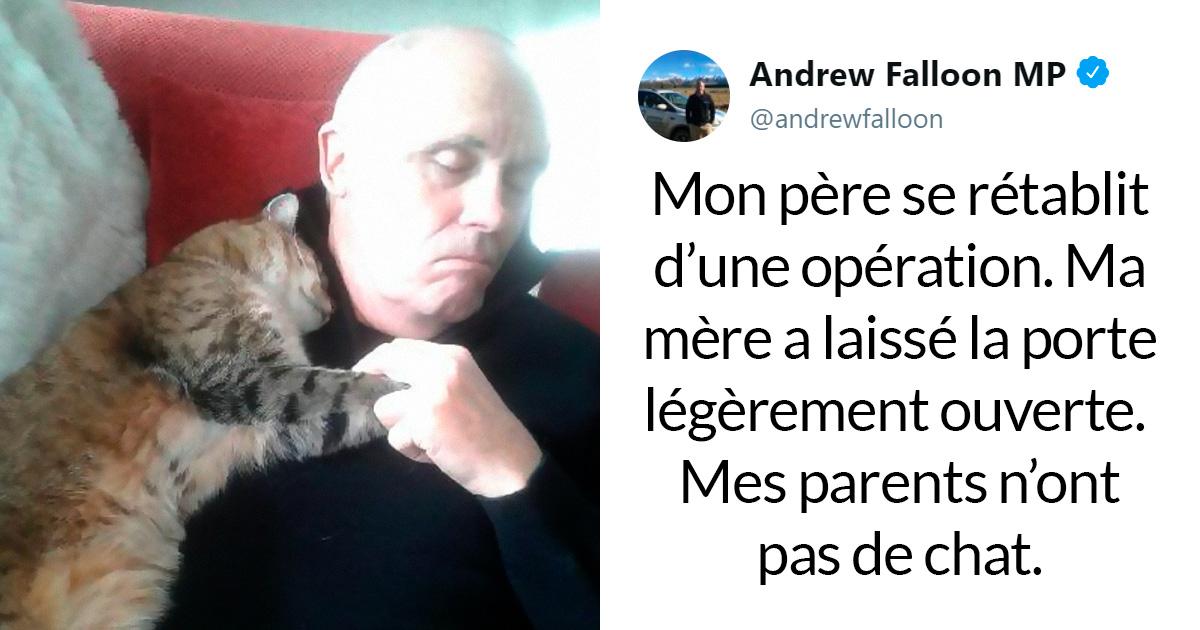 Un homme qui se rétablissait d'une opération s'est réveillé aux côtés d'un chat inconnu qui lui faisait un câlin