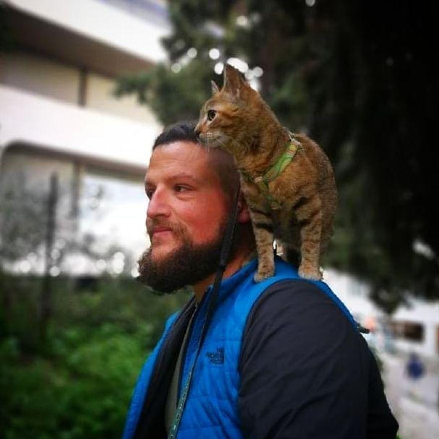 Un homme a décidé de parcourir le monde seul à vélo, mais il a trouvé un chat errant qui l'a accompagné