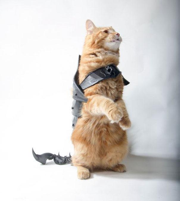 Un gars a transformé son chat en vrai dur à cuire avec cette armure imprimée en 3D