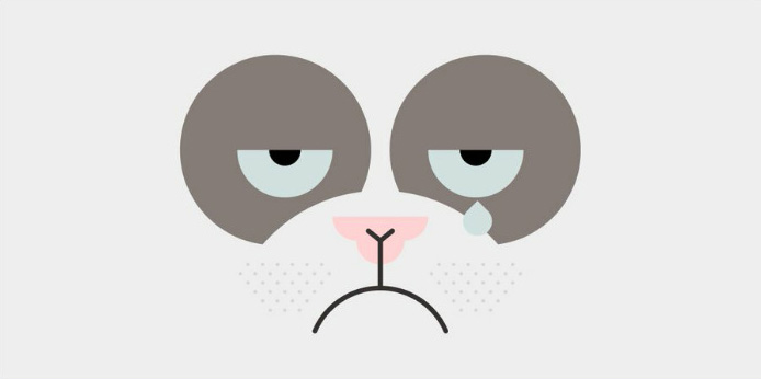 Grumpy Cat est morte à 7 ans
