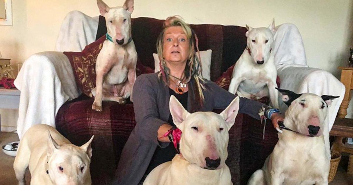 Un homme a obligé sa femme à choisir entre lui et ses chiens et elle est restée avec les chiens