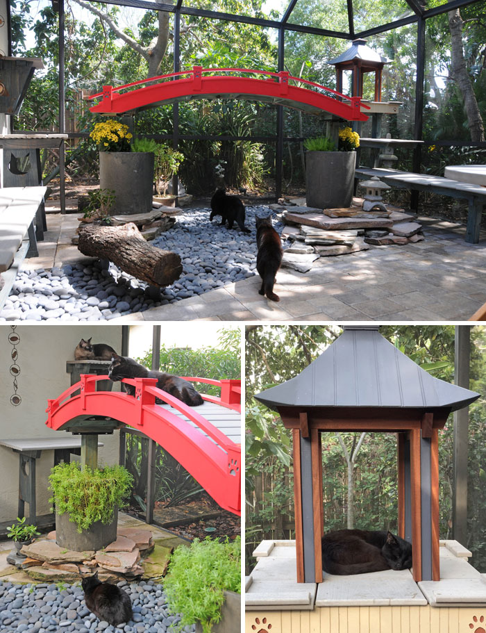 Les patios pour chats, connus sous le nom de «chatios», sont la nouvelle façon de gâter ton chat bien-aimé (22 images)