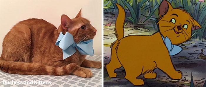 Des propriétaires ont nommé leur chatte Duchesse, puis elle a donné naissance à tous les personnages des «Aristochats»