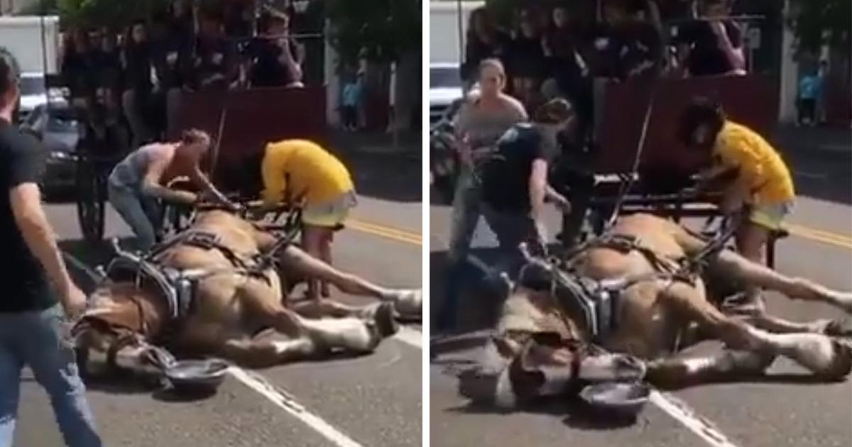 Un cheval s'effondre après avoir tiré une calèche de touristes à la chaleur