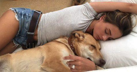 Les femmes dorment mieux à côté des chiens qu'à côté des hommes, selon une étude