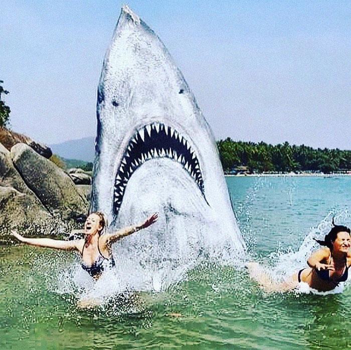 Un graffeur a transformé un rocher de plage en un grand requin blanc et les gens publient leurs meilleures photos avec lui