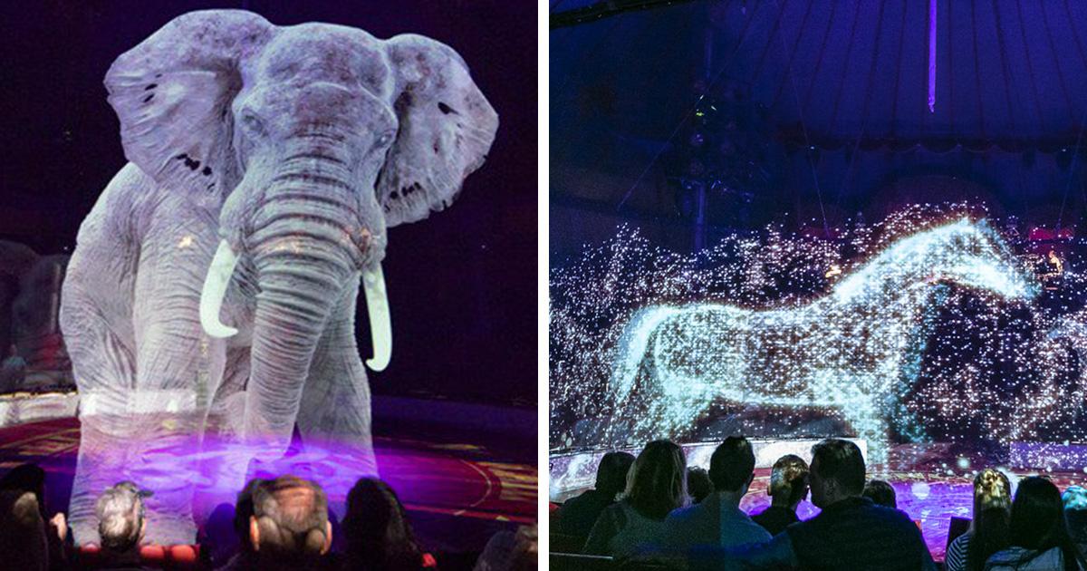 Ce cirque allemand utilise des hologrammes au lieu d'animaux vivants pour une expérience magique sans cruauté
