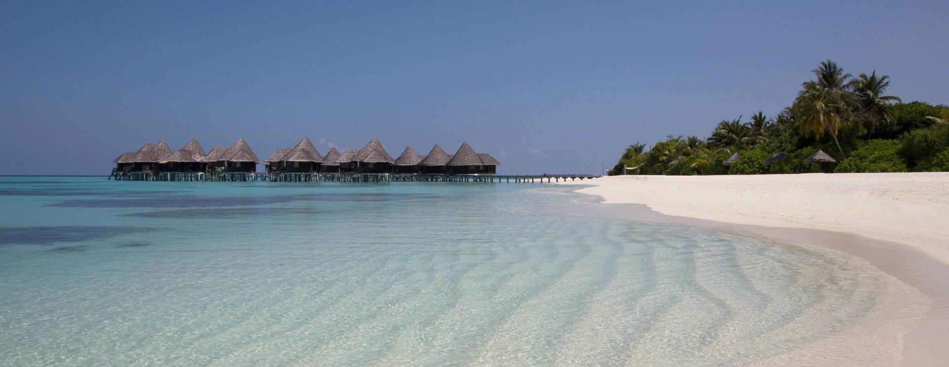Cet hôtel de luxe aux Maldives va te payer pour que tu t'occupes des tortues