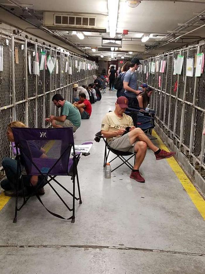 Des gens boudent les feux d'artifice du 4 juillet pour réconforter des chiens de refuge effrayés