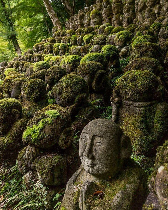 22 fois où la nature a gagné sa bataille contre la civilisation (nouvelles images)