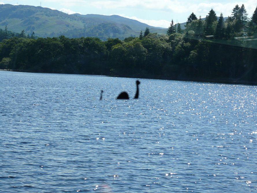 Des milliers de personnes veulent envahir le Loch Ness pour «trouver le grand garçon»