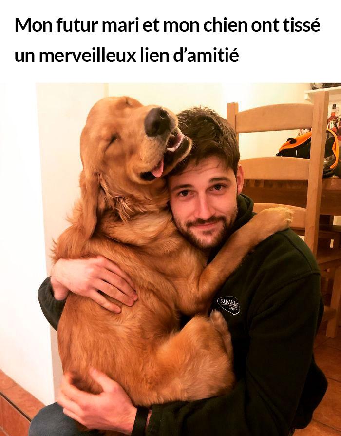 23 photos de chiens avec des messages sympas qui, espérons-le, égayeront ta journée (nouvelles images)