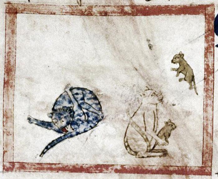 Le peuple médiéval était apparemment fasciné par les chats qui se léchaient le derrière et voici 14 images comme preuve