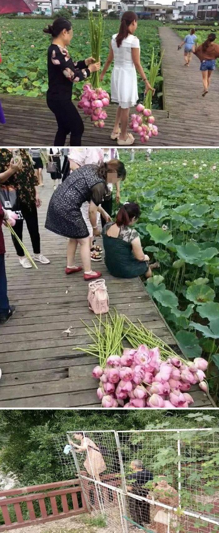 22 touristes imbéciles qui n'ont aucun respect pour les lieux qu'ils visitent