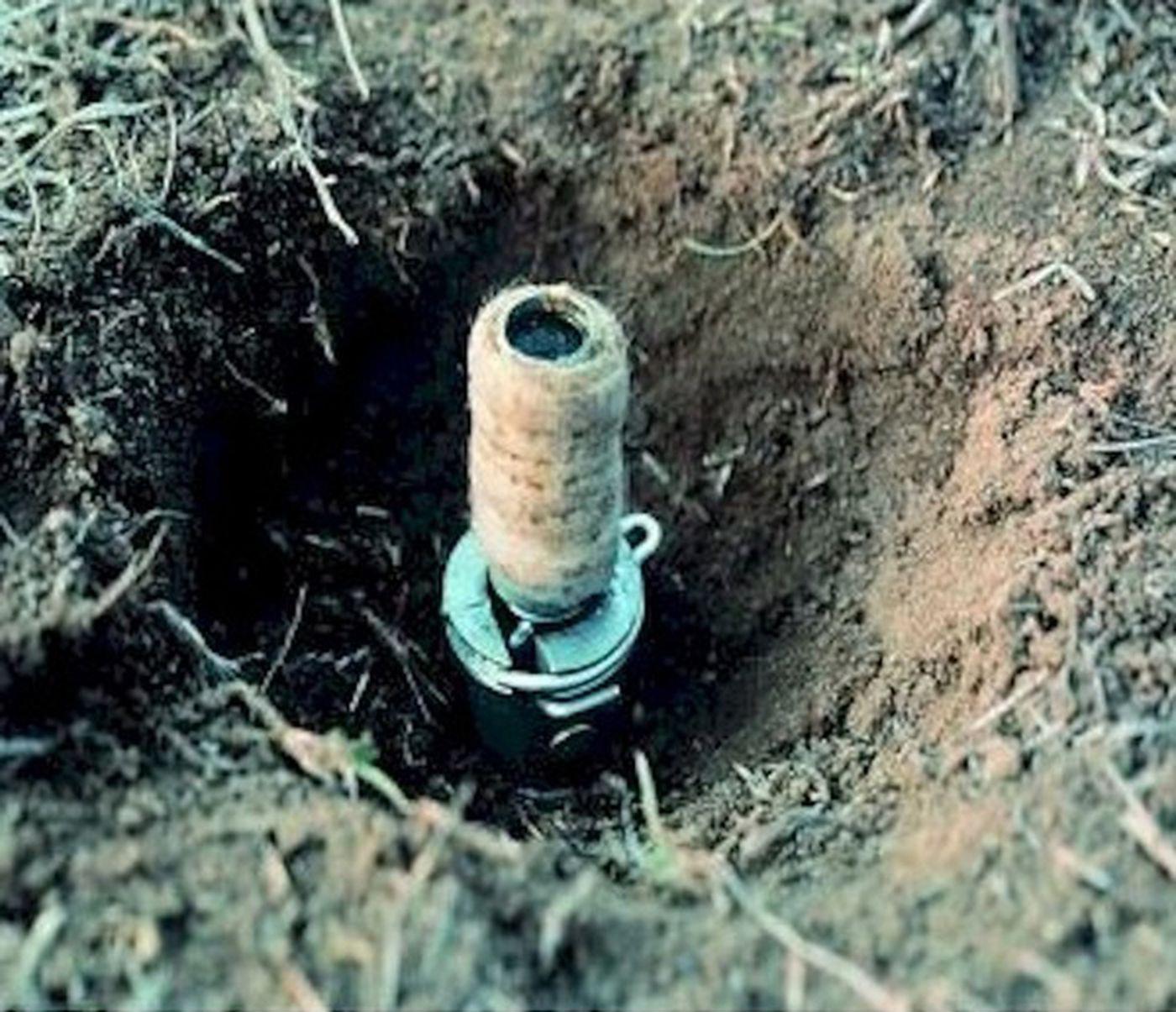 L'administration Trump autorise les «bombes de cyanure» pour tuer les animaux sauvages