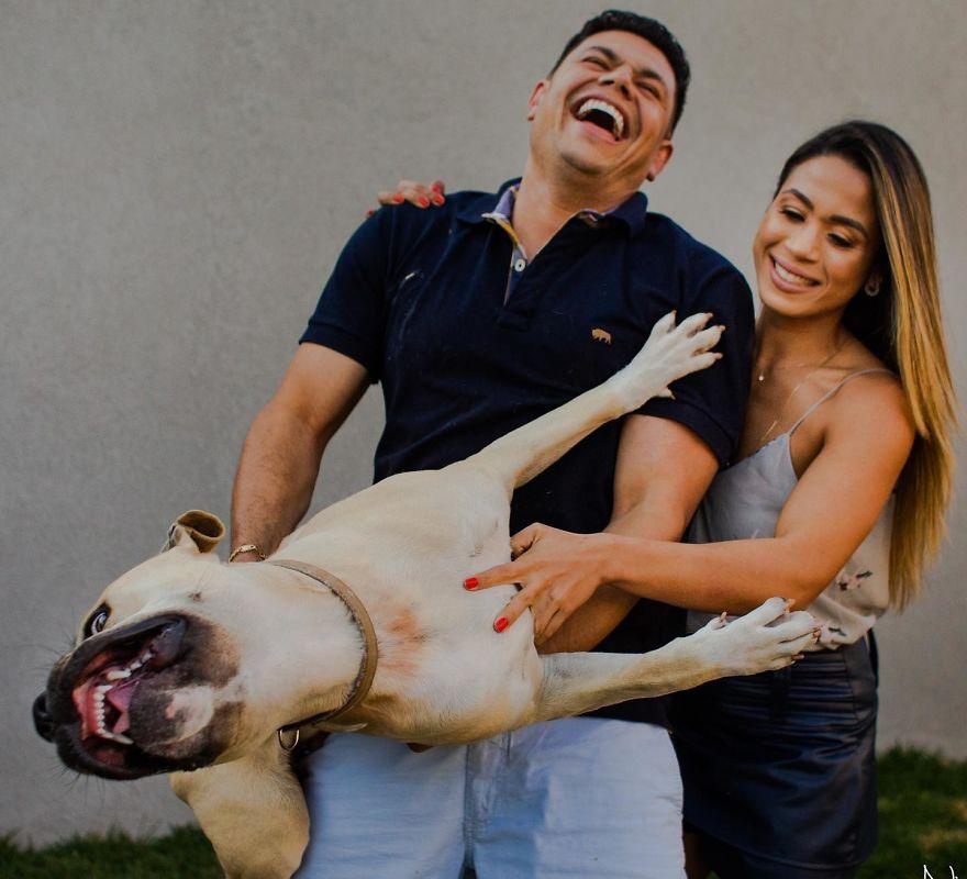 Ce couple a emmené son chien à sa séance photo pré-mariage et les 10 photos sont vraiment drôles