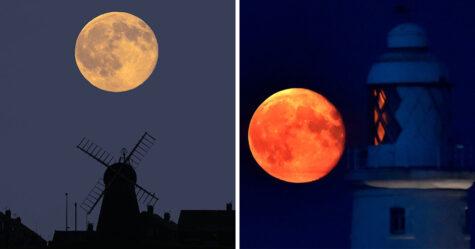 Une rare lune des moissons «rougeoyante» apparaîtra dans le ciel ce soir