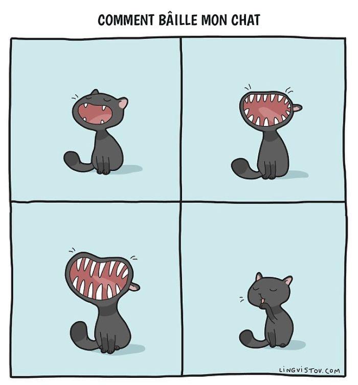 J'illustre ces moments hilarants dans la vie de tous les propriétaires de chats (22 nouvelles images)