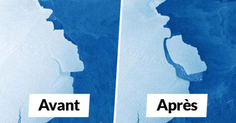 315 milliards de tonnes de glace viennent de se détacher d'une barrière de glace en Antarctique et l'iceberg est 5 fois plus grand que Malte
