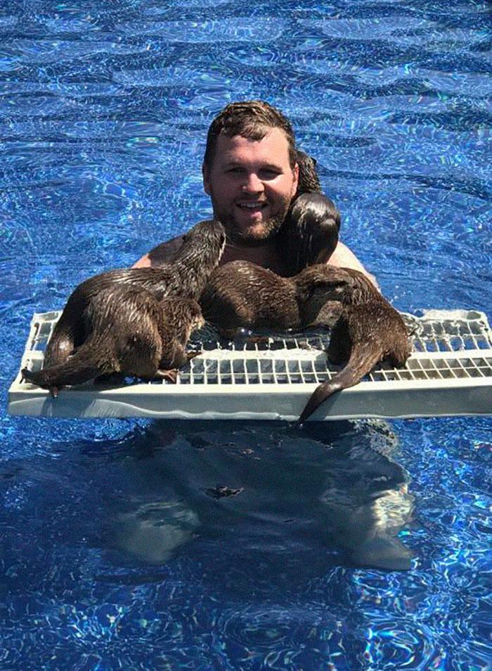 Tu peux nager avec de minuscules loutres dans cette réserve d'animaux, et ces 23 photos sont adorables