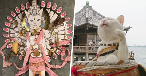 Il y a un temple de chats au Japon et ses moines sont les plus mignons (27 images)