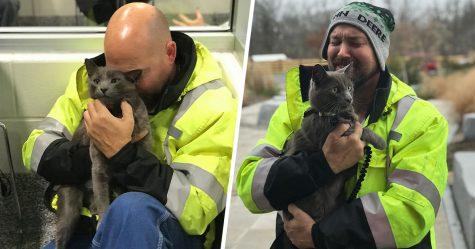 Ce camionneur a fondu en larmes quand il a retrouvé son chat et compagnon de voyage perdu après des mois de recherches
