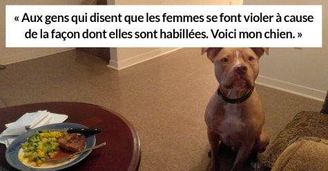 Une femme a utilisé la photo de son chien pour montrer que le viol n'est pas la faute de la femme