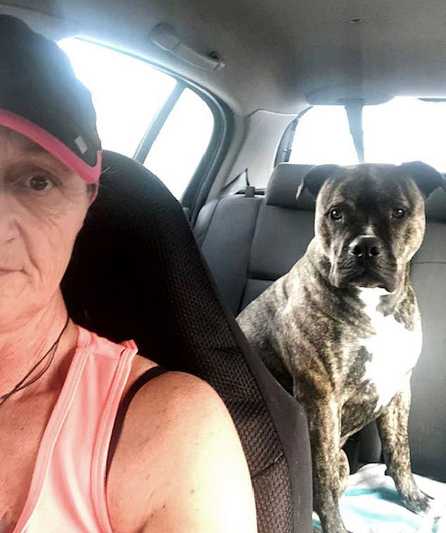 Une propriétaire de chien a été horrifiée quand son animal a refusé de lâcher un gode trouvé lors d'une promenade