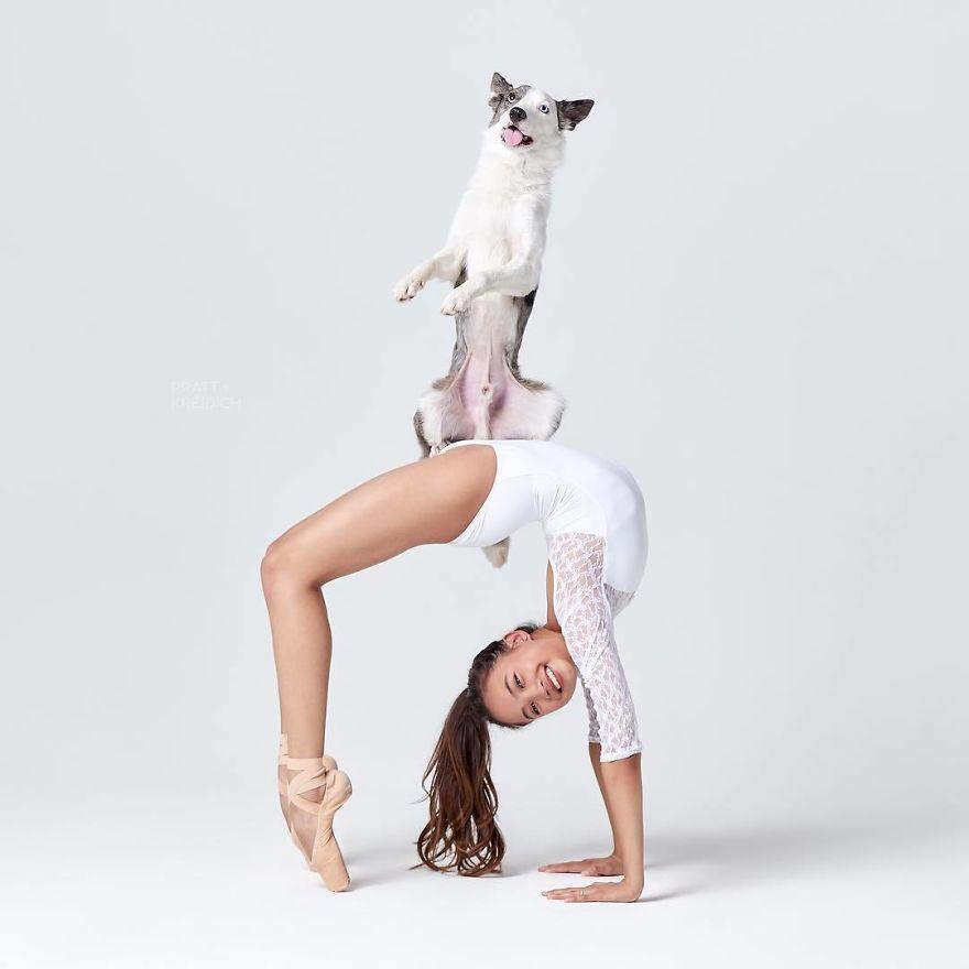 Des danseuses de ballet et des chiens ont posé ensemble pour une séance photo et le résultat va égayer ta journée (33 images)