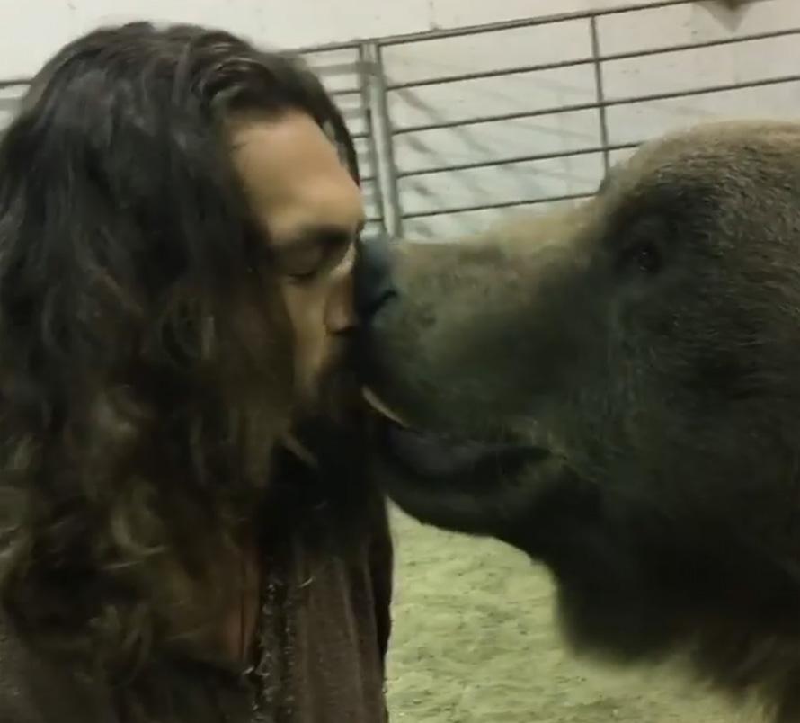 Jason Momoa a été accusé de cruauté envers les animaux pour une vidéo avec un ours grizzly de 400 kilos