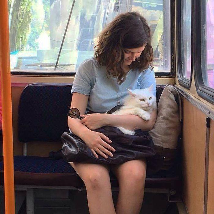 Ce compte Instagram recueille des choses amusantes et étranges aperçues dans les transports en commun (34 images)