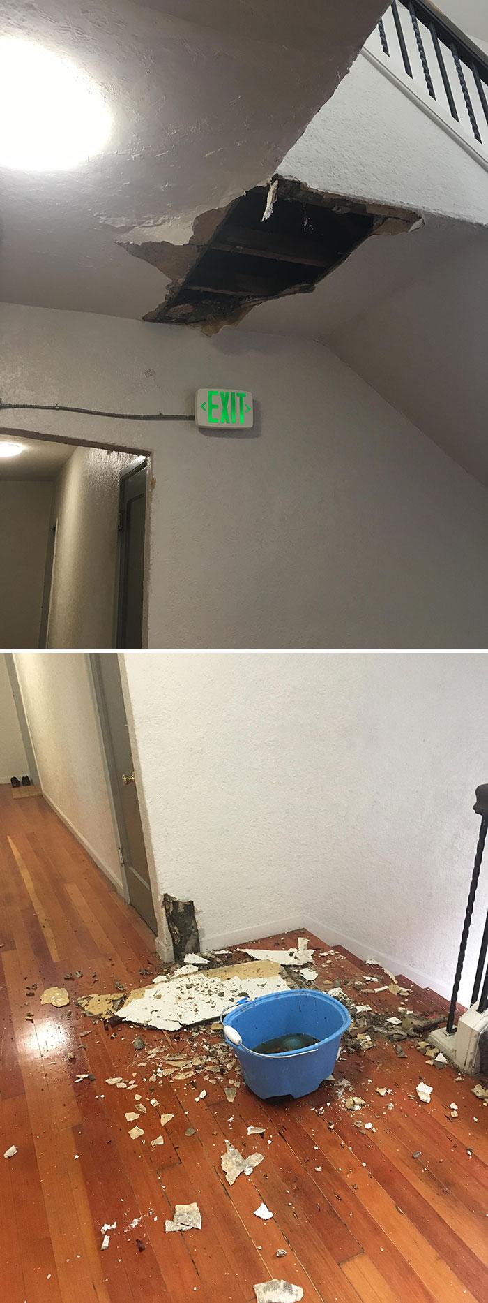 22 fois où des propriétaires ont tellement négligé leurs locataires qu'ils ont dû prendre des photos comme preuve