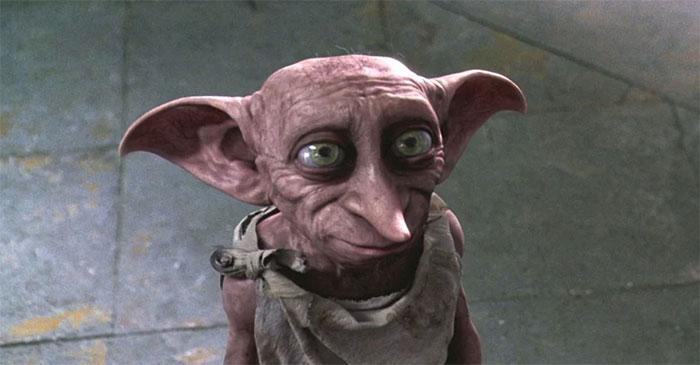 Tout le monde veut adopter ce chat très spécial qui ressemble à bébé Yoda et à Dobby l'elfe