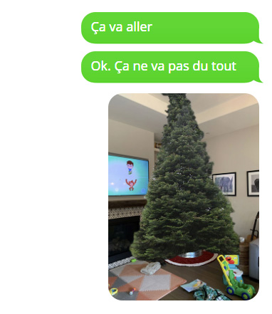 Ce papa est allé acheter l'arbre de Noël sans maman et a décidé de la taquiner avec des images hilarantes