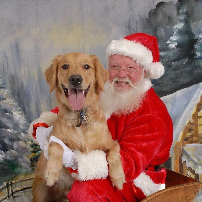 22 fois où des gens ont mis une touche amusante à leurs photos avec le père Noël dans les centres commerciaux