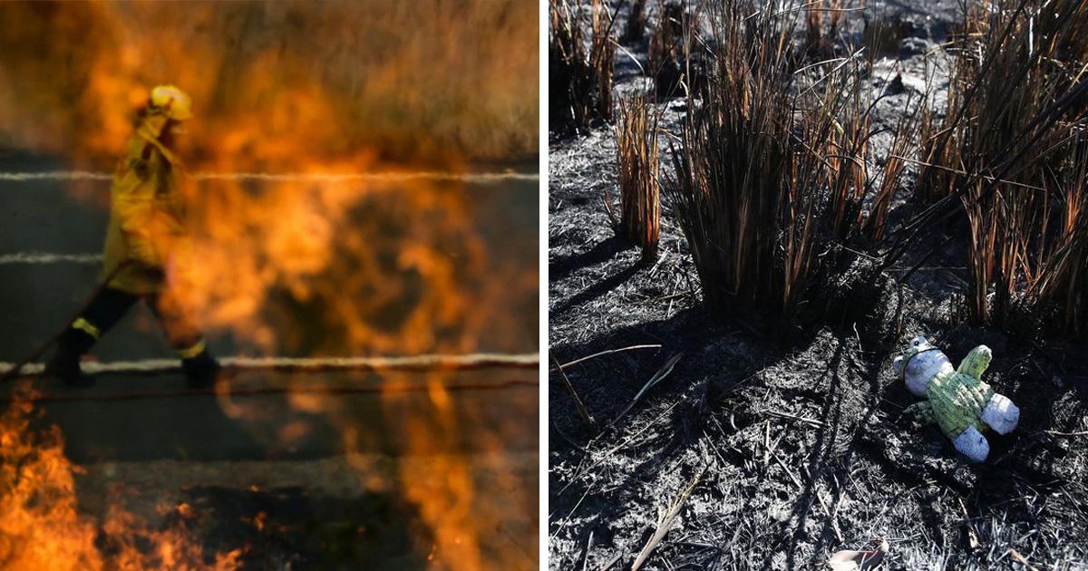Plus de 100 personnes ont été arrêtées pour avoir délibérément allumé des feux de forêt en Australie