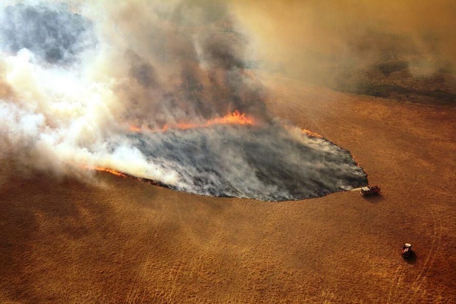 11 millions $ en dons pour les feux de forêt ne seront pas versés aux victimes