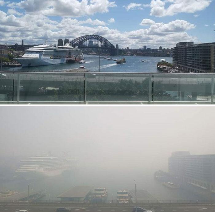 20 photos avant et maintenant qui montrent les dégâts causés par les feux de forêt en Australie