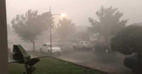 Il pleut enfin en Australie et la pluie a éteint plus de 30 feux de forêt mortels