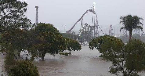 L'Australie est dévastée par des feux de forêt et des inondations après avoir reçu 300 mm de pluie d'une «supercellule»