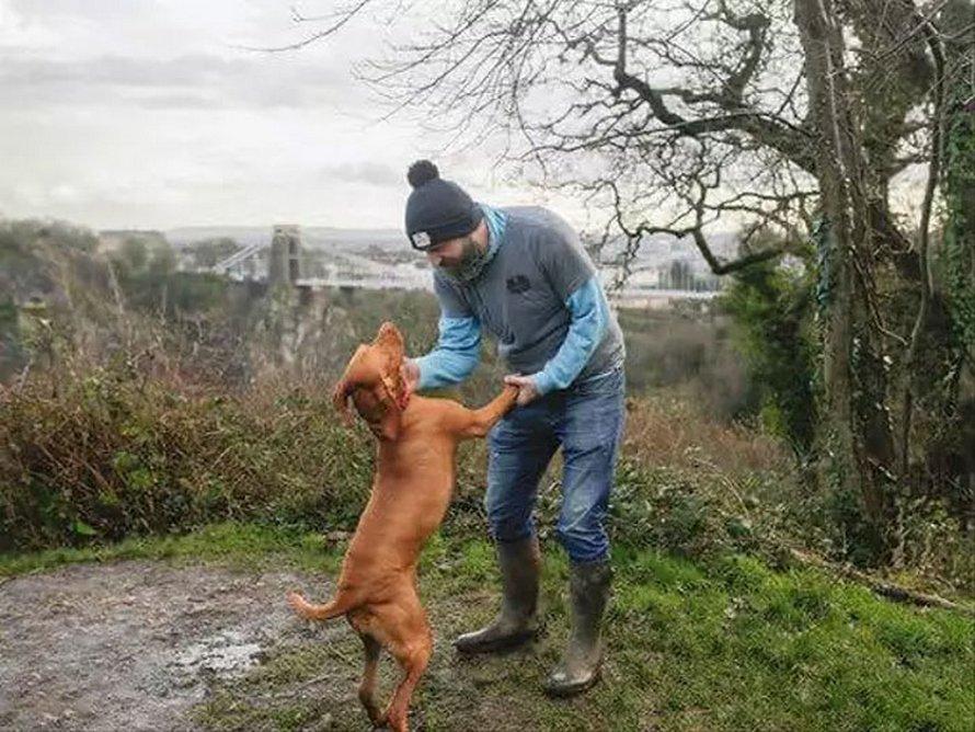 Un gars a créé un groupe de marche avec des chiens pour les hommes qui ont besoin d'un compagnon pour parler de leurs problèmes