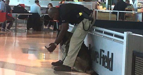 Une femme a partagé une photo d'un policier qui prenait des selfies avec son chien, et il a répondu en publiant d'autres images