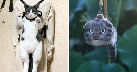 Les sacs en forme de chats sont la nouvelle mode au Japon (25 images)