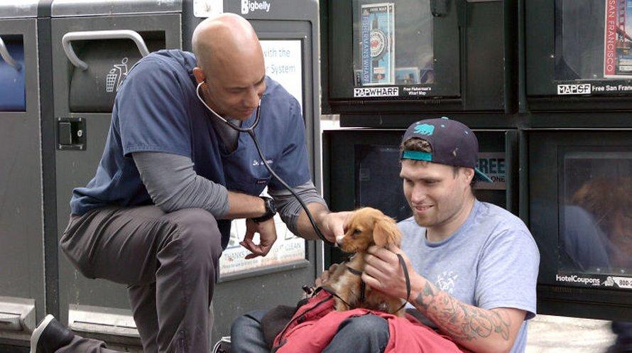 Ce vétérinaire se promène dans les rues de Californie et traite gratuitement les animaux des sans-abris