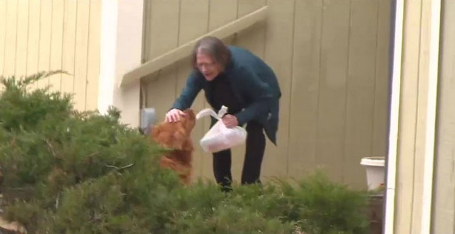 Quand cette femme âgée souffrant de problèmes respiratoires a dû s'isoler, le chien de sa voisine a commencé à lui livrer ses courses